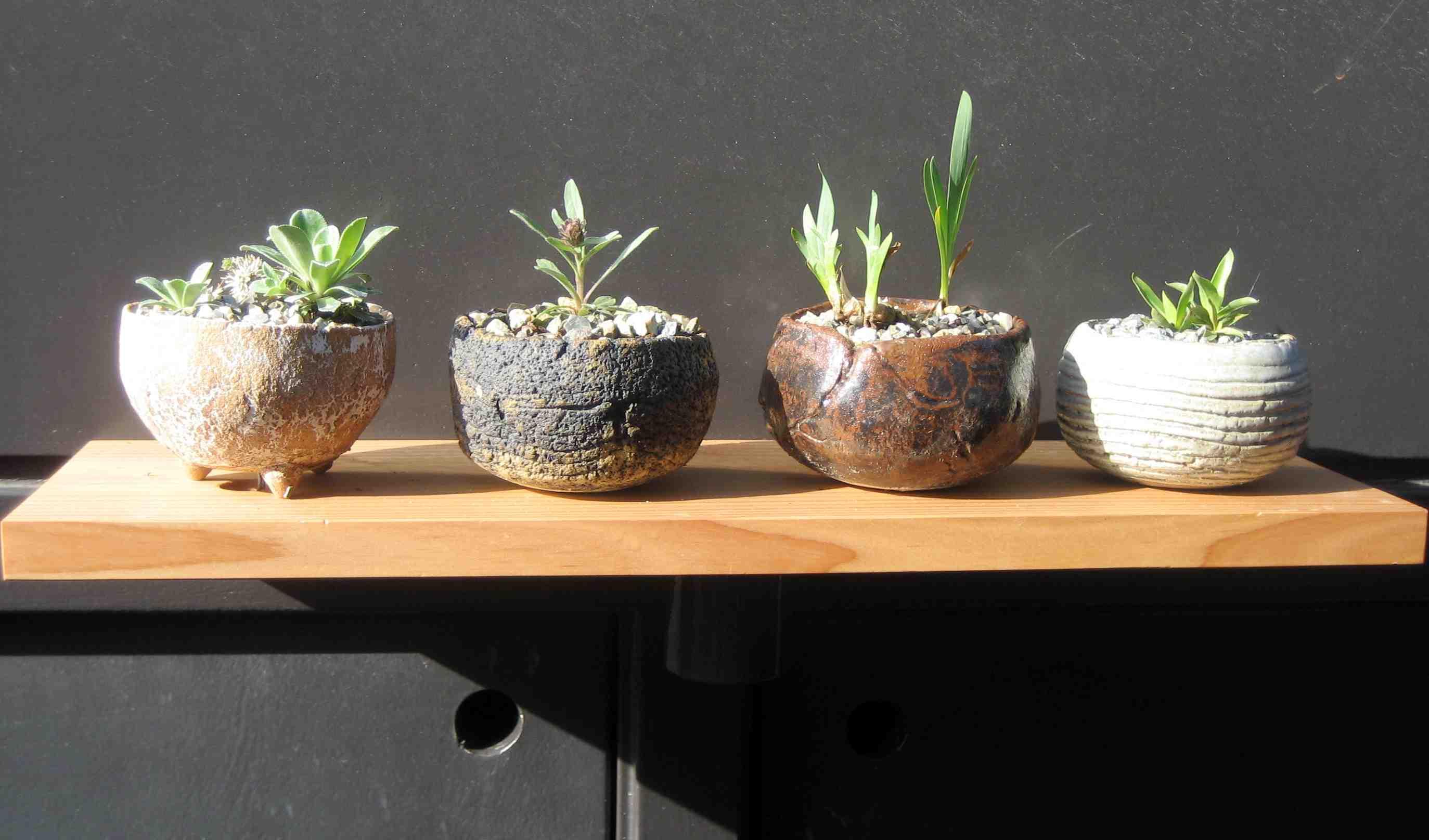 Orchideeen tafel
